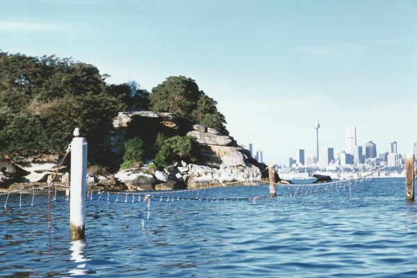Drilling and piling with associated works at Neilson Park baths in Vaucluse