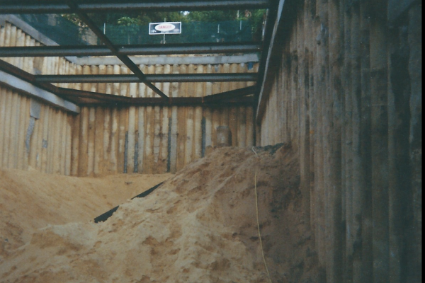 Engineering design, drilling, piling, capping beam, internal bracing, excavation and certification in Bellevue Hill